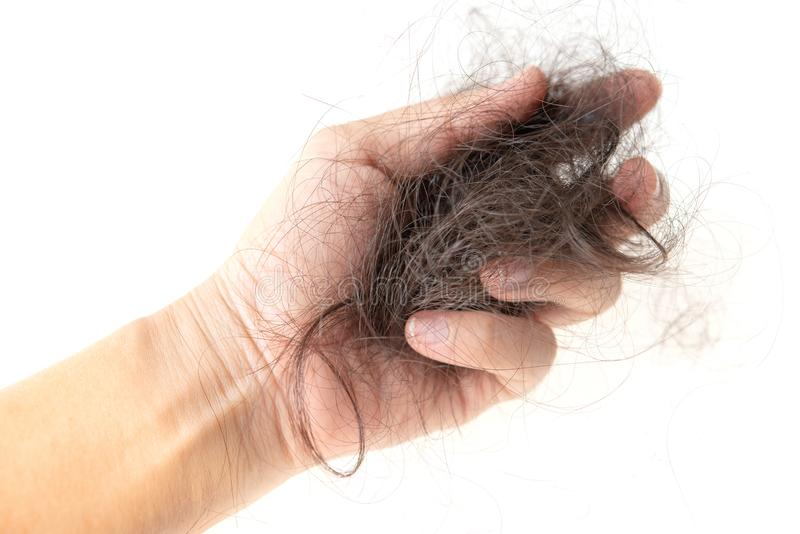 Lost hair isolated royalty free stock image