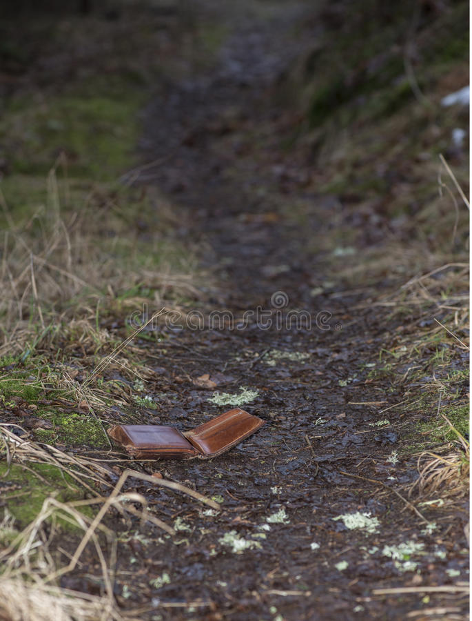 Lost leather wallet. Leather wallet lost on walking track in forest stock photography