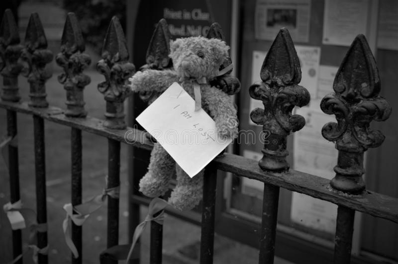Poor Teddy, Lost and In Crisis! royalty free stock photo
