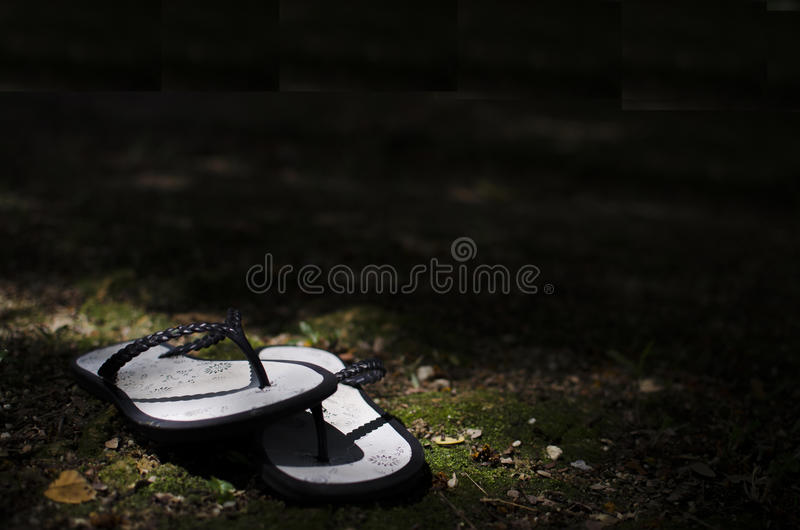 Lost pair of flippers. stock photography