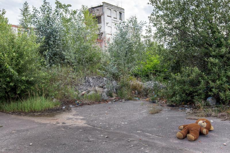 Lost plush bear in an abandoned factory royalty free stock photography