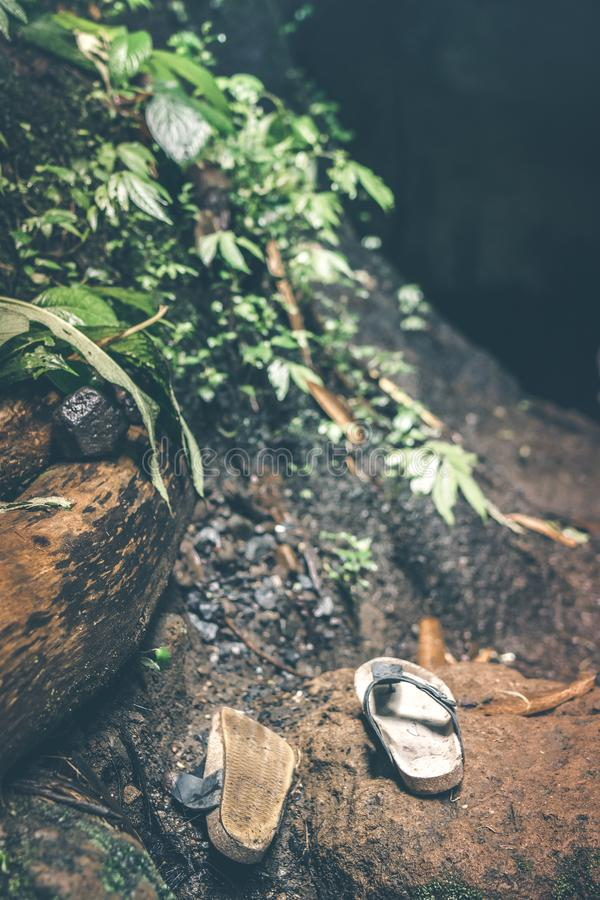 Lost shoes in the rainforest jungle. Bali island. Indonesia stock photo