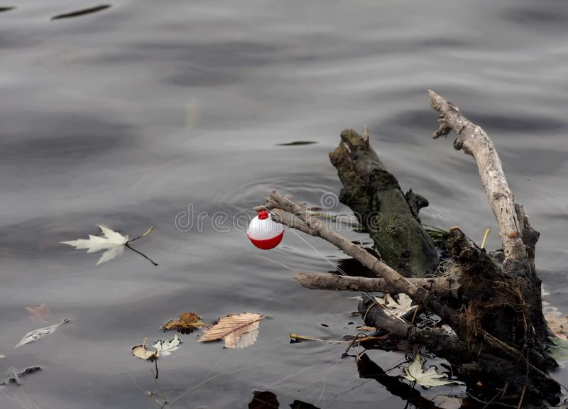 Lost Bobber Fishing Float On a Stump stock photo