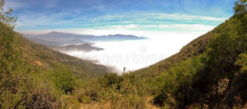 Losu Angeles Campana park narodowy, Chile obraz royalty free