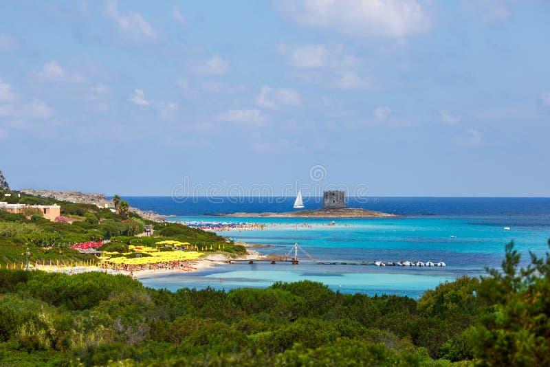 Losu Angeles Pelosa plaża w północy Sardinia wyspa fotografia royalty free