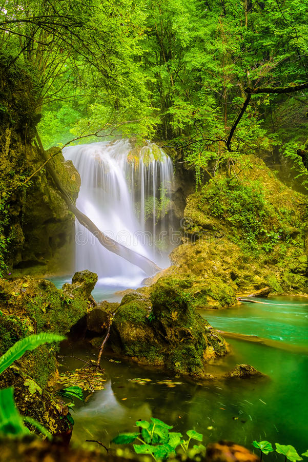 Losu Angeles Vaioaga siklawa, Beusnita park narodowy zdjęcie stock