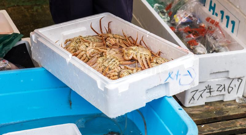 Lot of alaska king crab in box for sale at Nagoya royalty free stock images