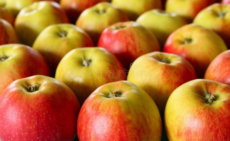 Download A lot of apples stock image. Image of fruit, ingredient - 11488127