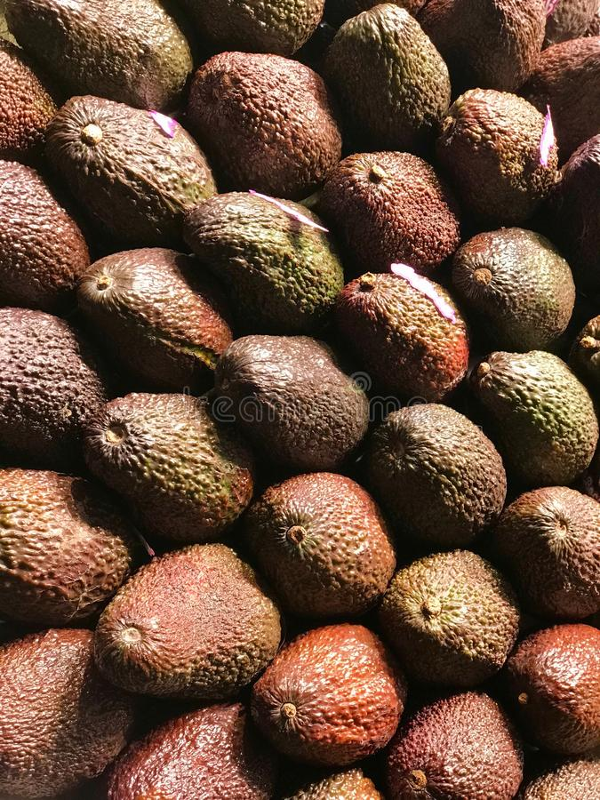 Lot Avocado fotografia royalty free