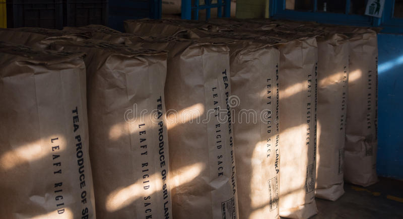 A lot of black tea bags storage on factory stock in Sri Lanka stock photography