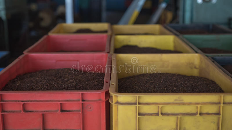 A lot of Boxes of black tea in the tea factory warehouse. stock photography