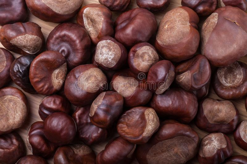Lot of chestnuts for background stock images
