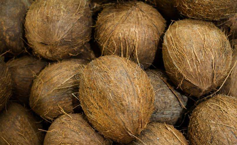 A lot of coconut fruit is ideal for a background image. Close-up stock photos