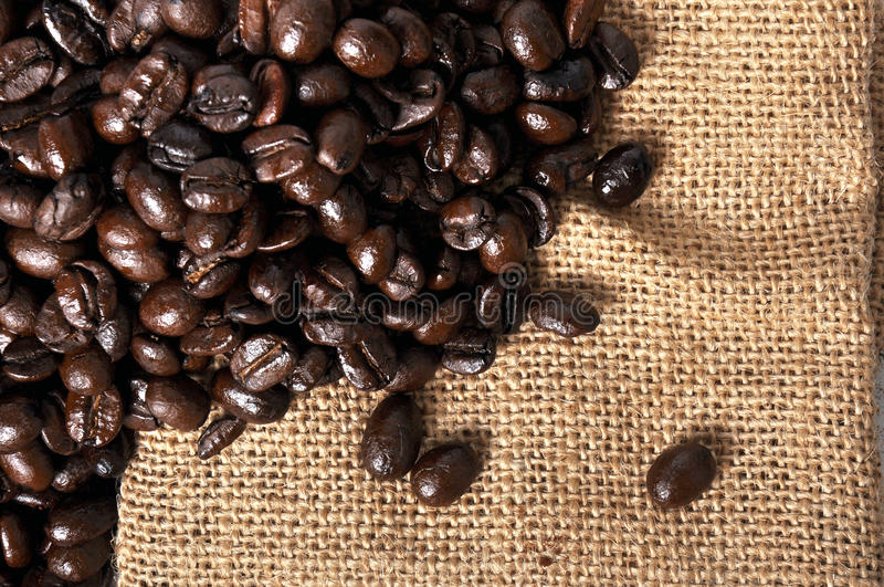 A lot of coffee beans. On sackcloth stock images