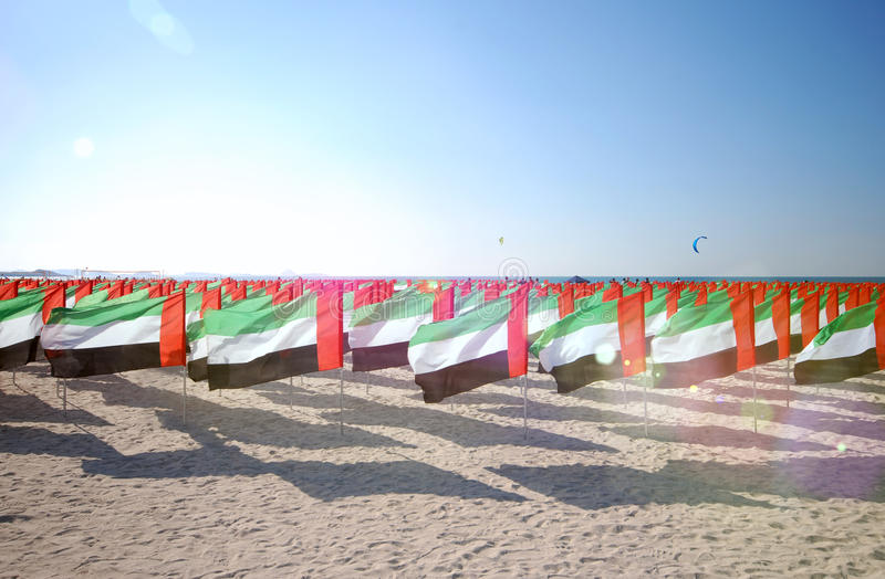 Lot of flags United Arab Emirates for the anniversary celebration on the beach. Sun ray. Lot of flags United Arab Emirates for the anniversary celebration on stock photography