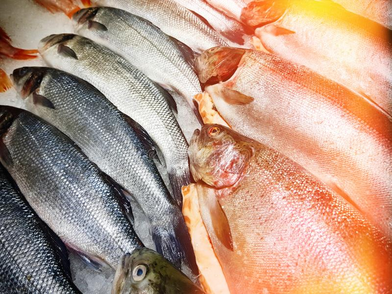 Freshly caught fish with ice on store shelve. A lot of fresh raw fish on store shelve with ice stock images