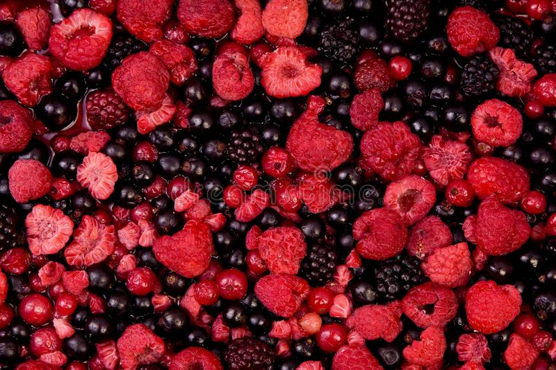 Download A lot of fruit cocktail stock image. Image of bilberry - 13154419