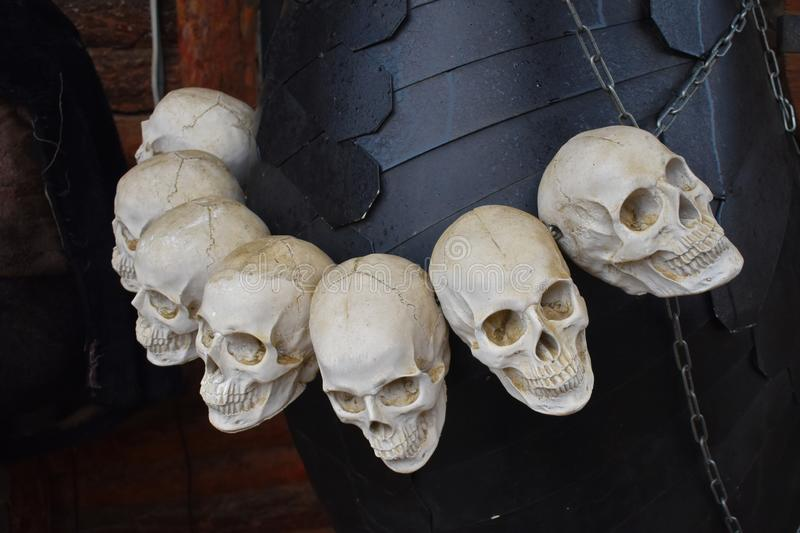 A lot of human skulls. Cannibalism. Primitive customs and Ancient tribes royalty free stock images