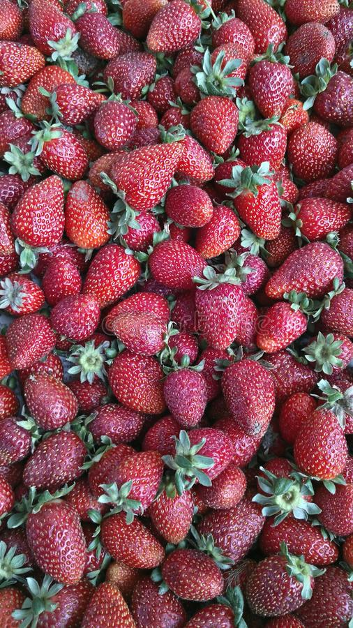 Strawberry once again strawberry royalty free stock image