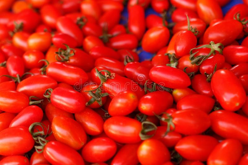 A lot of little red tomatoes. View from above stock image