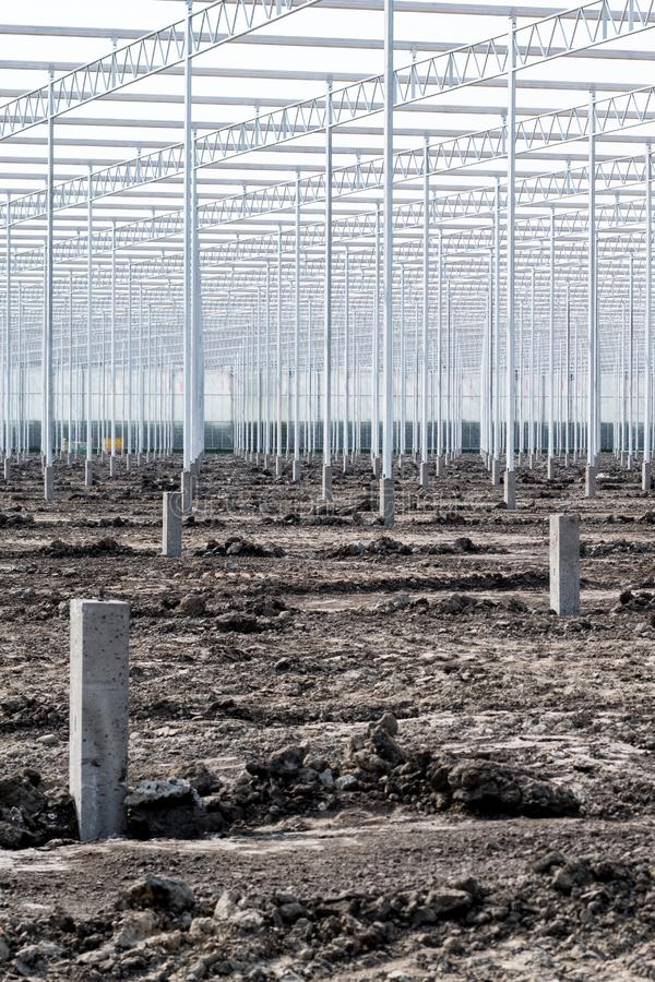 A lot of poles to become a greenhouse. Thousands of poles are erected to build greenhouses on acres of land stock photo