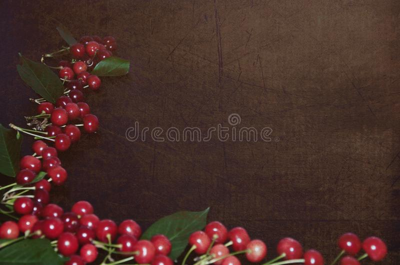 A lot of red cherries on a retro background stock photography