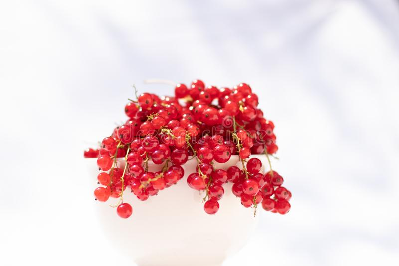 Red currant bowl, focus on foreground stock image