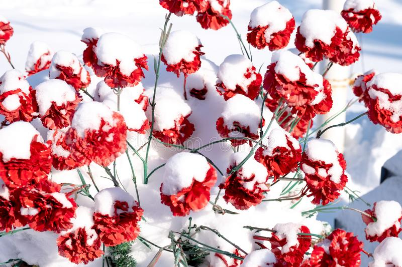 A lot of red flowers are not real artificial made in the form royalty free stock image