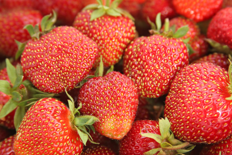 A lot of strawberries