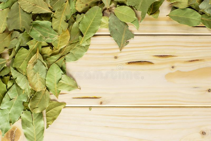 Dry olive green bay laurel leaves on natural wood. Lot of whole dry olive green bay laurel leaves above on the left side flatlay on natural wood stock photo