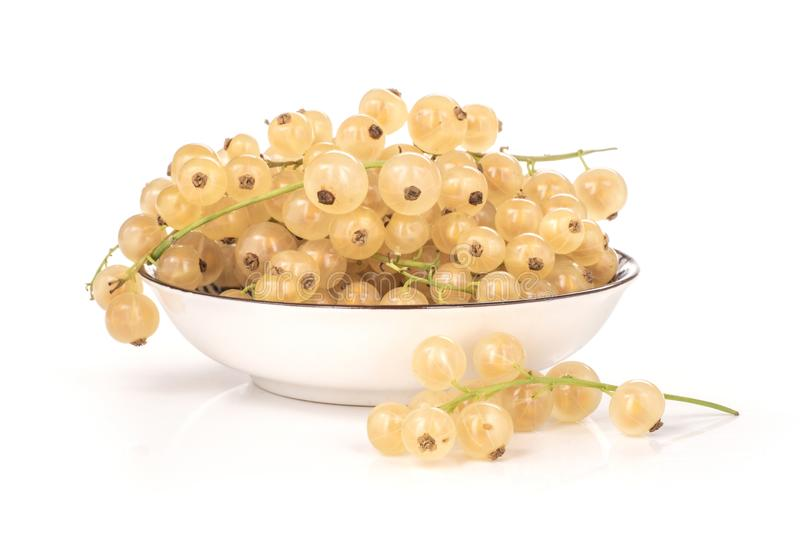 Fresh white currant berries isolated on white. Lot of whole fresh white currant berry blanka variety on a porcelain plate isolated on white royalty free stock photo