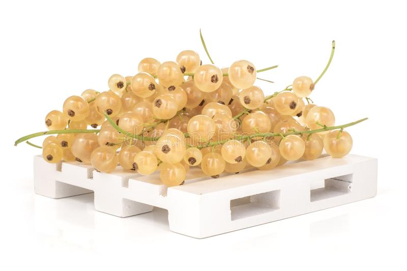 Fresh white currant berries isolated on white. Lot of whole fresh white currant berry blanka variety on a wooden pallet isolated on white royalty free stock images
