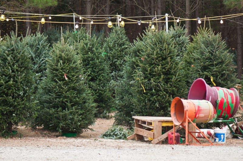 Lote da árvore de Natal imagem de stock