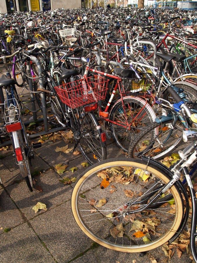 lote da bicicleta foto de stock