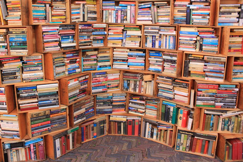 Lote dos livros