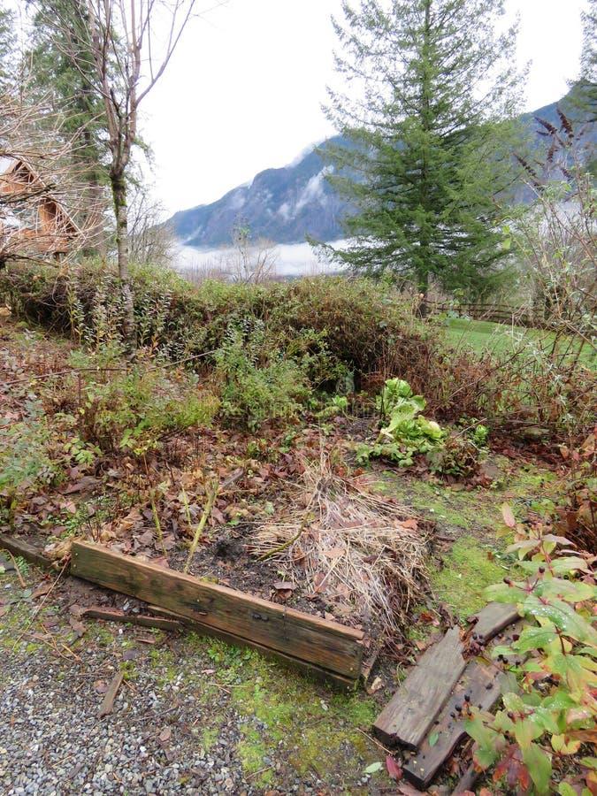 Lote levantado velho do jardim de Snoqualmie na desordem imagens de stock