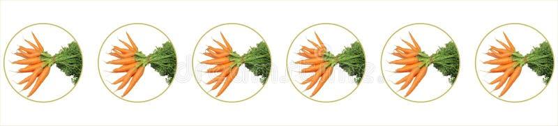 Lotes das cenouras na bolha foto de stock royalty free