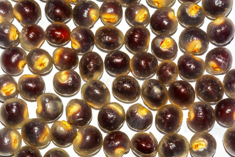 Lotes de frutos descascados maduros frescos do longan ou de frutos do olho do dragão no fundo branco imagens de stock