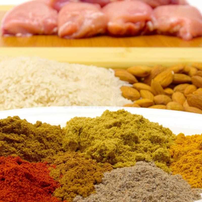 Lotes de ingredientes de Korma imagens de stock