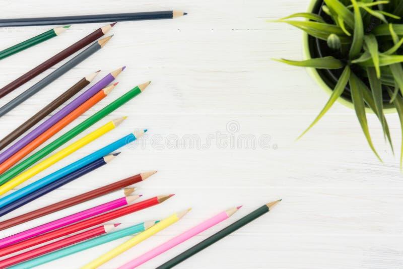 Lotes de lápis coloridos ao lado da decoração da grama verde no Whit fotografia de stock royalty free