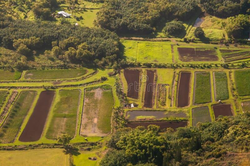 Lotes de terra na ilha de Kauai dos aviões imagens de stock royalty free