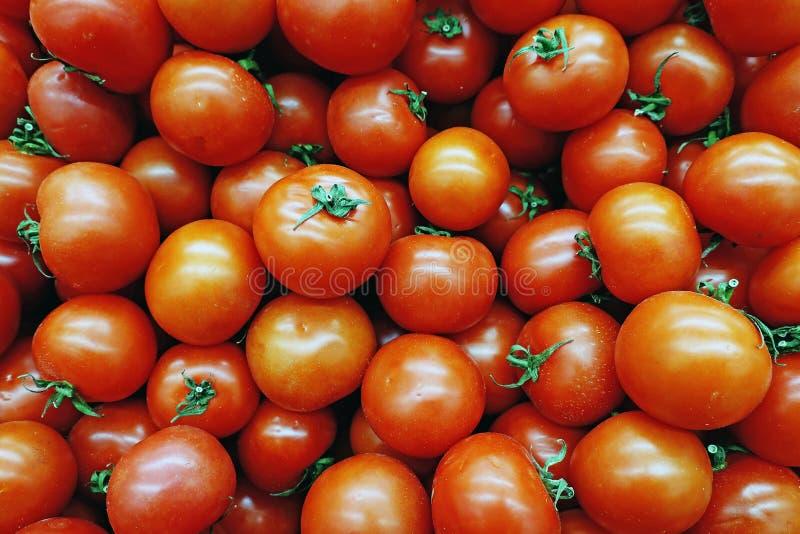Lotes de tomates brilhantes vermelhos no mercado foto de stock