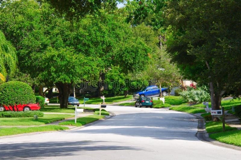 Lotes de w da rua de Residentail de árvores verdes luxúrias foto de stock
