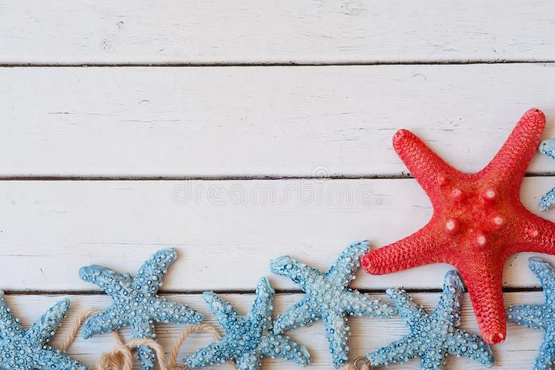 Lotes dos starfish que sentam-se em um fundo da areia, fundo das férias imagem de stock