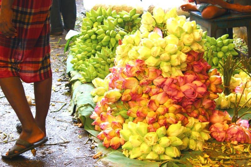 Loti ad un mercato del fiore in Calcutta fotografia stock libera da diritti