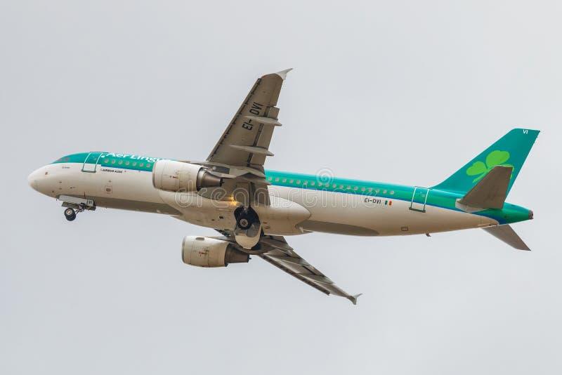 Lotniczy lingus obrazy royalty free
