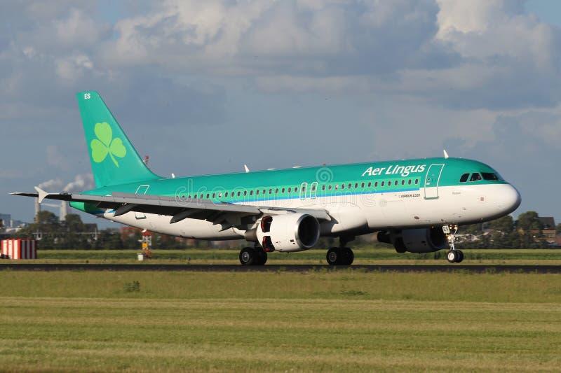 Lotniczy lingus Aerobus A320 obraz royalty free