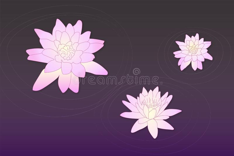 Loto colorido del vector en el agua con los círculos en violeta oscura y colores rosados ilustración del vector
