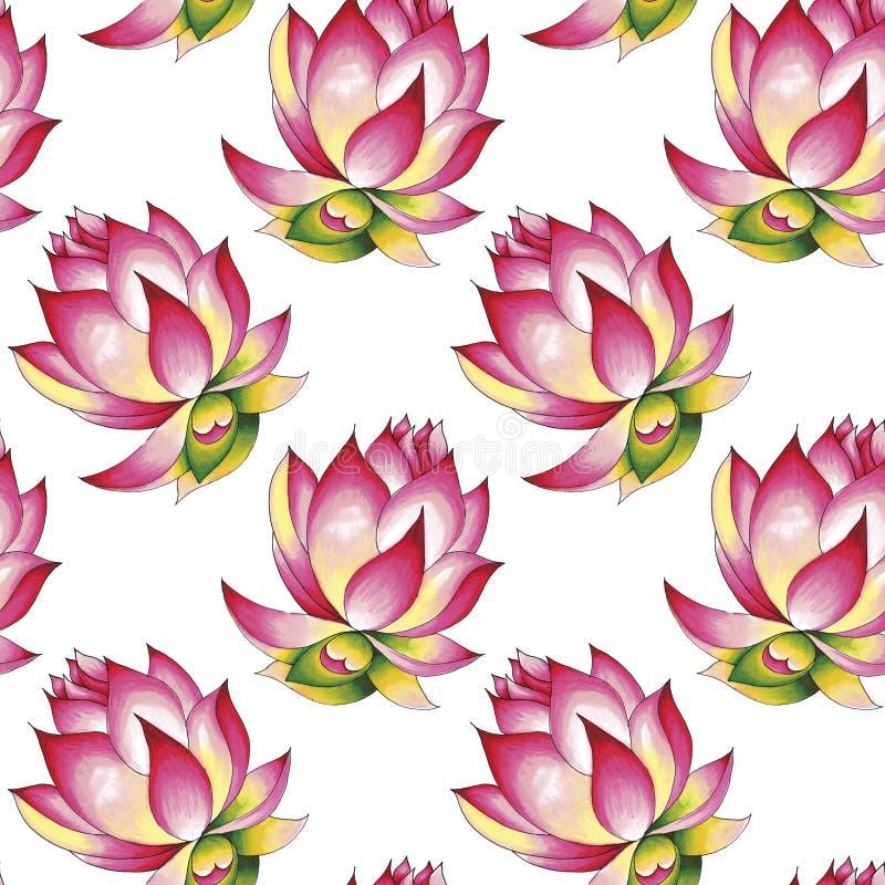 Loto en flor Trazado a mano de un patrón impecable Ilustración de los marcadores de alcohol Aislado sobre un fondo blanco foto de archivo