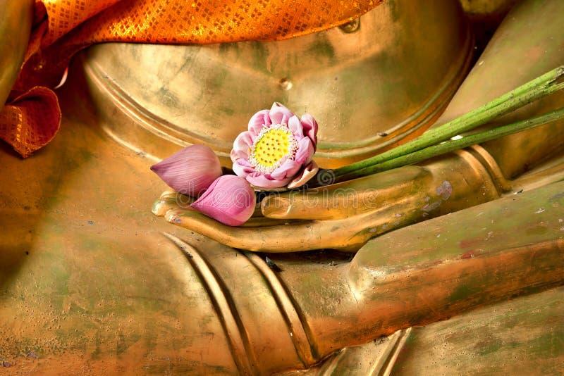 Lotos in der Hand von Buddha stockfotografie